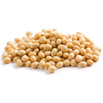 Soybeans Unhulled from Switzerland Bulk Organic, 25kg