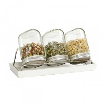 Eschenfelder Set of 3 Sprouting / Germination Glass Jar 1 Liter
